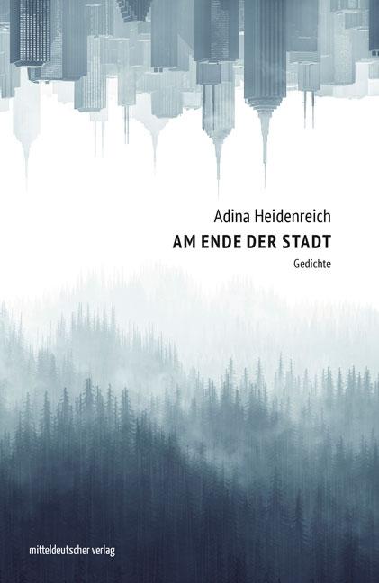 Am Ende der Stadt Buchcover von Adina Heidenreich